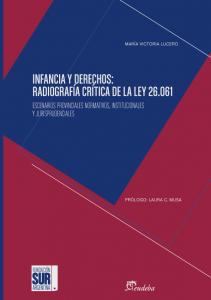 Infancia y derechos: Radiografía crítica de la ley 26.061
